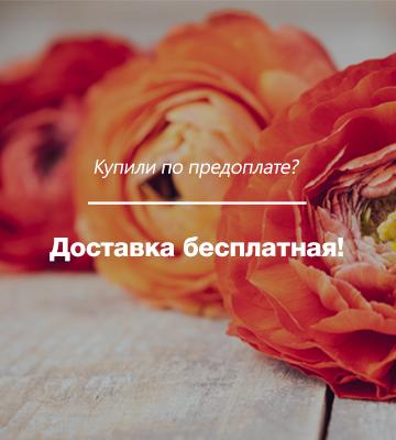 dostavka_web